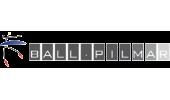 Ballpilmar