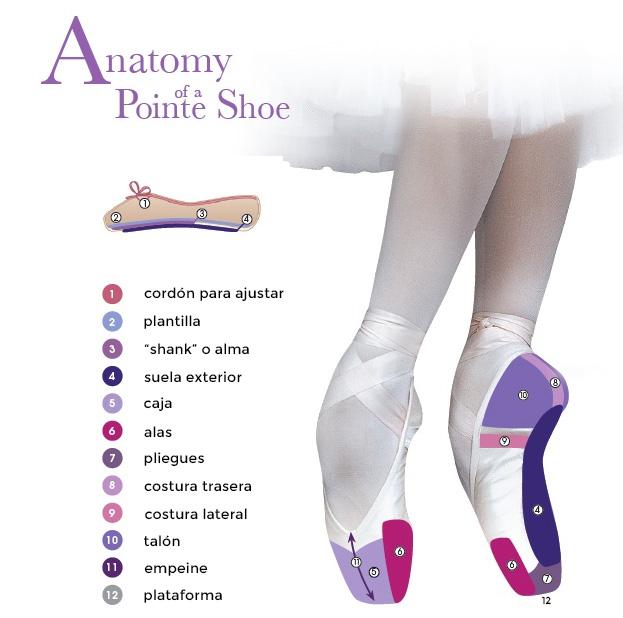 Partes de una punta de ballet para bailarinas